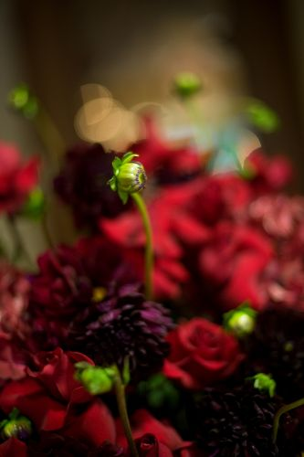Wedding flowers were dramatic with deep red roses eggplant purple flowers