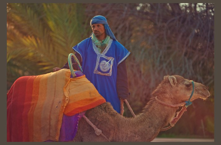 desert wedding offbeat wedding style casual middle east