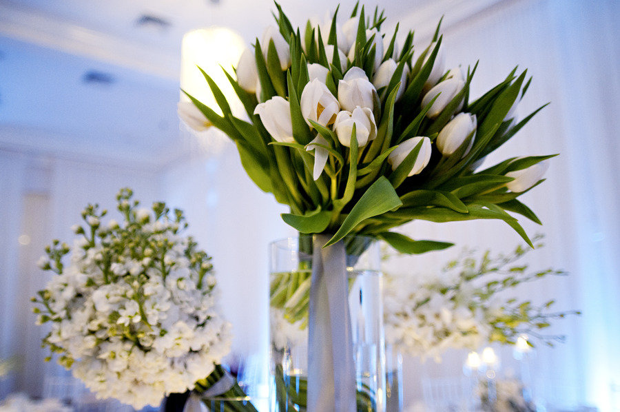 white wedding flowers tulips blue venue lighting Credit Flowers by Semia