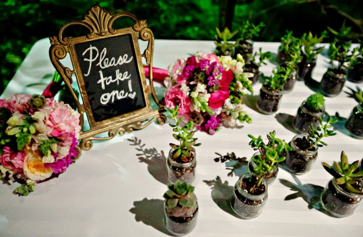 eco friendly wedding guest favors succulents