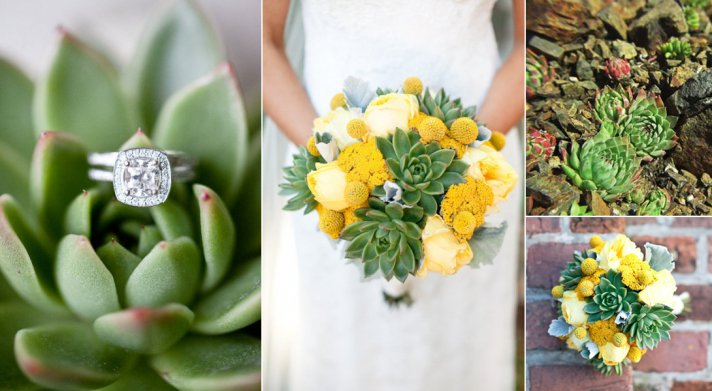 types of succulent wedding flowers eco friendly wedding ideas