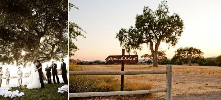 elegant outdoor wedding ceremony vows beneath tree