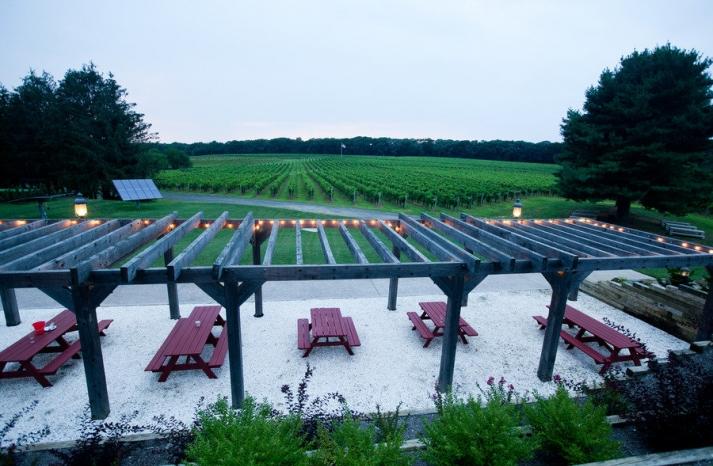 romantic winery wedding outdoor wedding venues winery venue