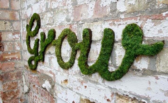 DIY wedding projects eco friendly decor moss grafitti
