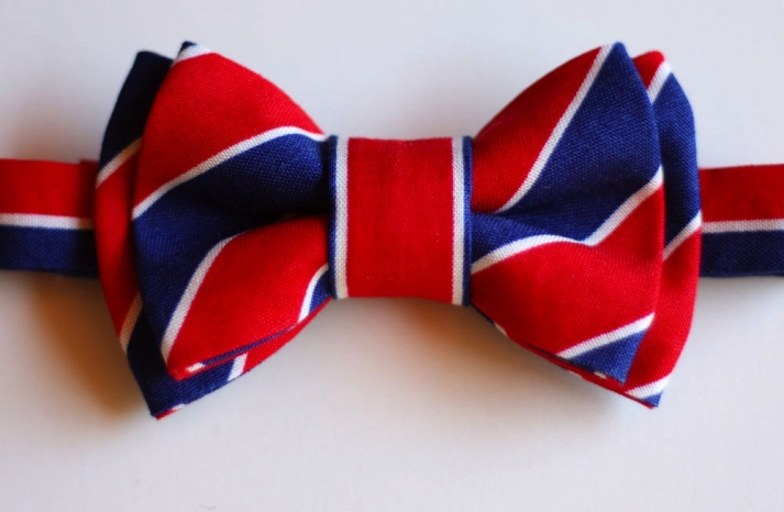 Rock the Vote Nearlyweds 21 Patriotic wedding finds 2