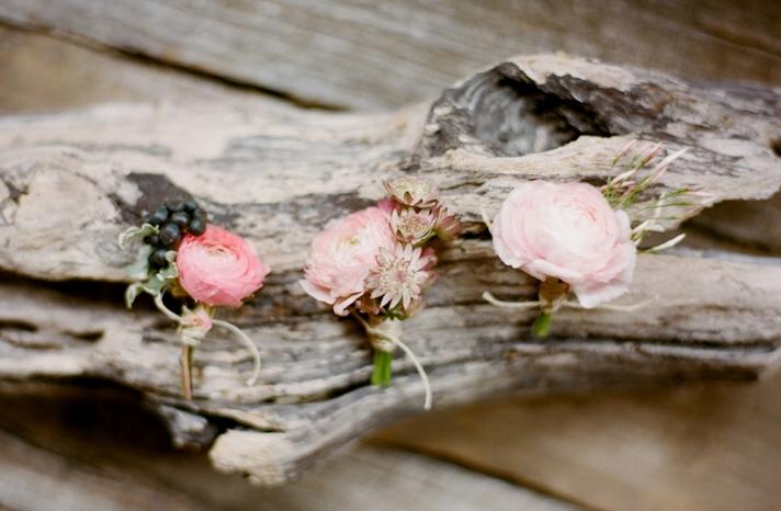 Romantic Light Pink Ranunculus Wedding Boutonnieres
