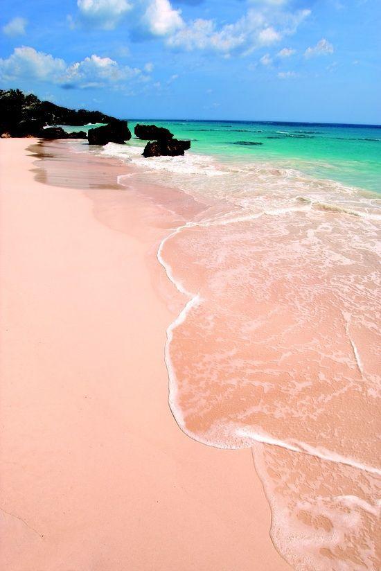 Bermuda Pink Sand Beach for Honeymooners