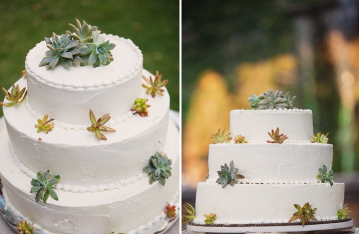 sweet succulents for green weddings 9