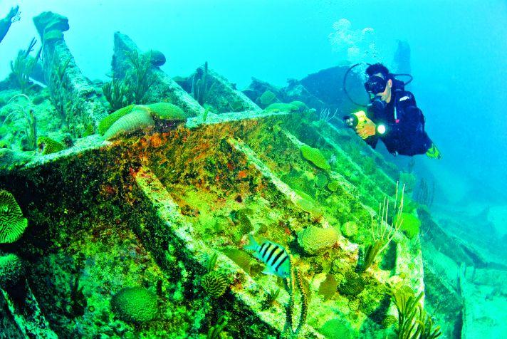 Bermuda scuba diver
