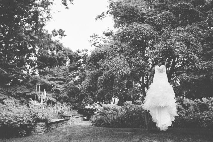 Dress Draped over a Tree